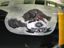Funny aircraft painting